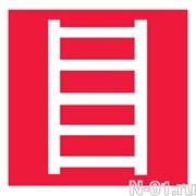 Пожарная лестница (пленка)